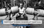 Программа для груди тренировок – Тренировка груди — специализация, секреты правильной тренировки мышц груди, программа тренировок и анатомия мышц груди