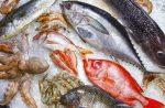 Рыба таблица по жирности – Нежирные сорта рыбы, список диетических рыб (горбуша, треска, камбала, зубатка и минтай)